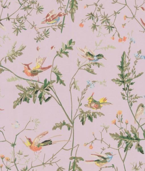 Tienda online telas papel papel pintado colibris rosa - Papel pintado antiguo ...