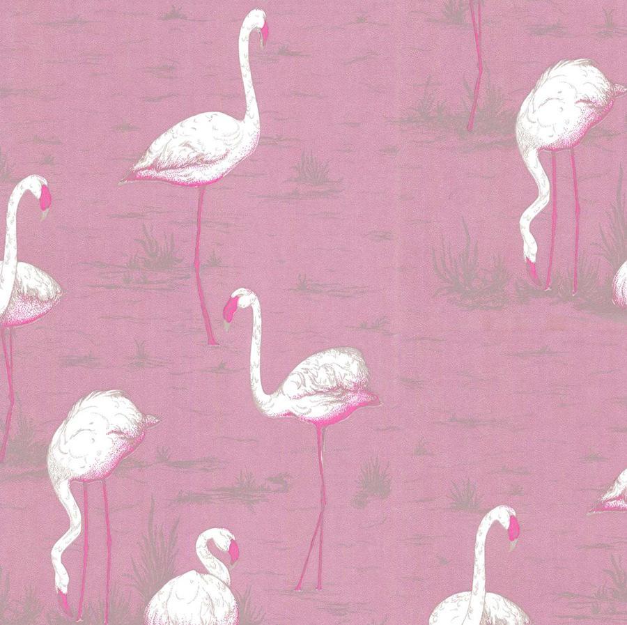 Tienda online telas papel papel pintado flamencos rosa - Papel pintado rosa ...