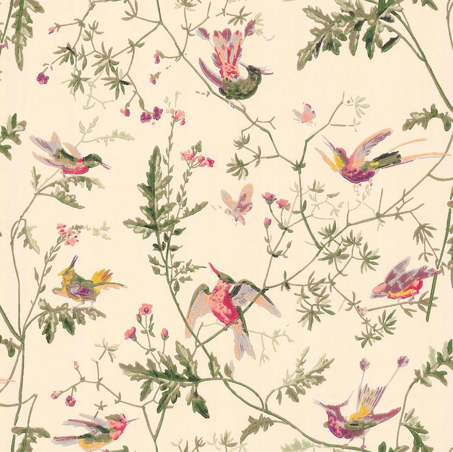 Tienda online telas papel papel pintado colibris crema - Papel pintado online ...