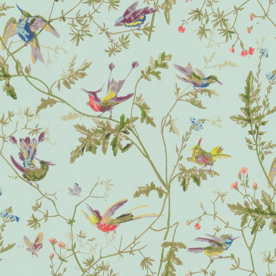 Tienda online telas papel papel pintado colibris verde - Papel y telas ...
