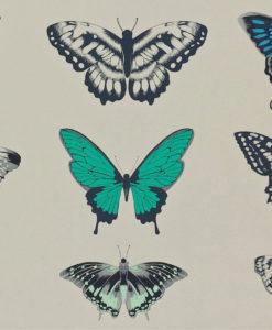papel-pintado-de-mariposas-azul-esmeralda
