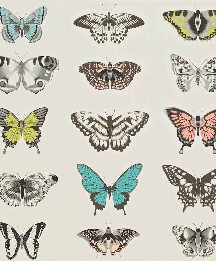 Tienda online telas papel papel de mariposas color - Papel pintado mariposas ...