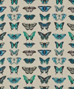 tela-de-mariposas-azul-esmeralda
