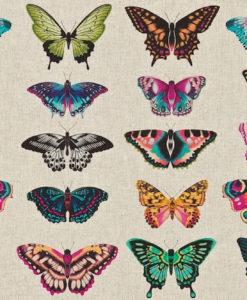 tela-de-mariposas-fresa