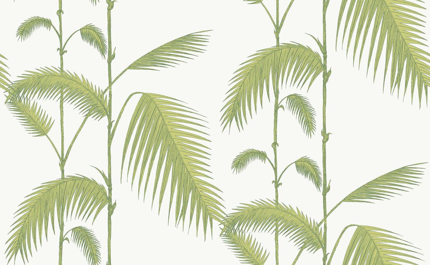 Tienda online telas papel papel pintado palmeras verde - Papel pintado on line ...