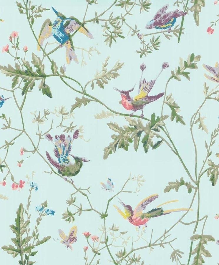 Tienda online telas papel papel pintado colibris azulado - Papel pintado on line ...