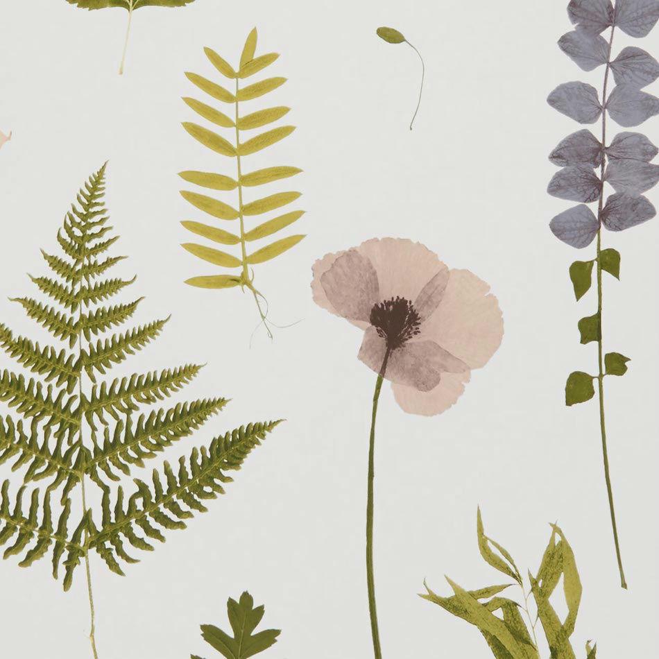 Tienda online telas papel papel pintado herbarium rosa - Papel pintado online ...