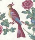 papel-pintado-darwin-hueso