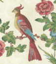 papel-pintado-darwin-provenza
